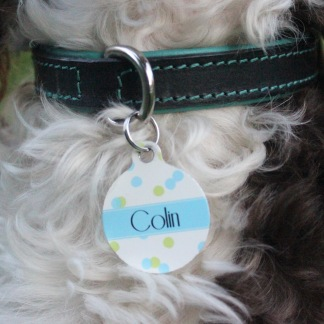 http://www.notonthehighstreet.com/welovetocreate/product/personalised-confetti-pet-id-tag
