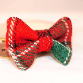 Last year's Christmas Bow Tie